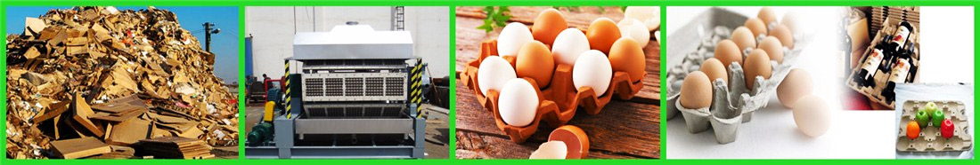 egg-tray-machine-for-sale