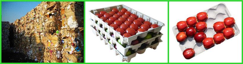apple-tray