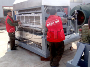 egg-tray-machine-exported-to-Egypt